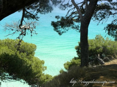 Isole Tremiti il mare di San Domino