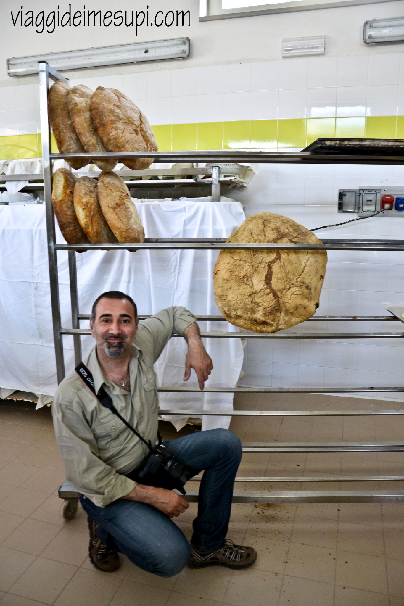 specialità del Gargano, pane e gatto