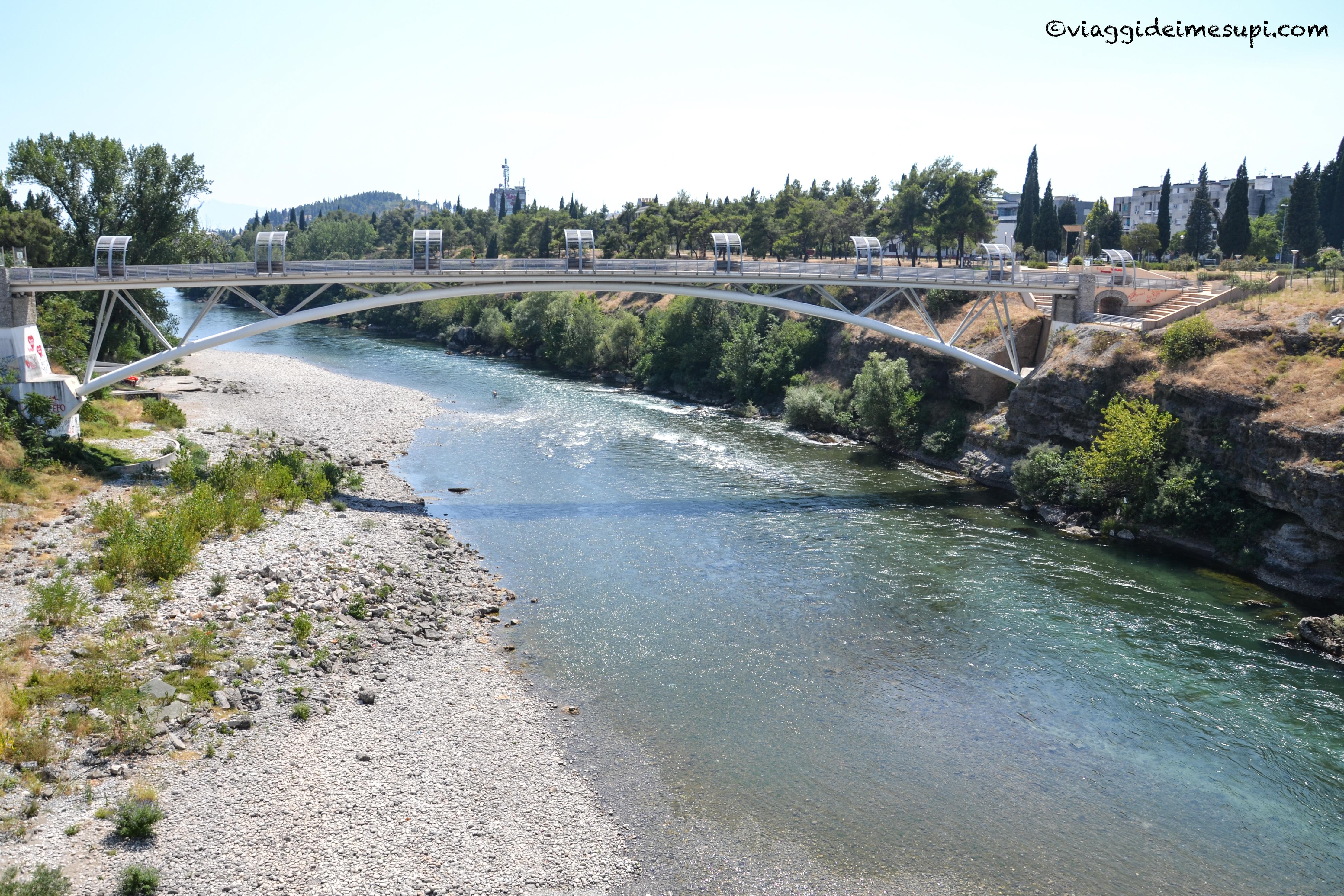 Podgorica, Ribnica