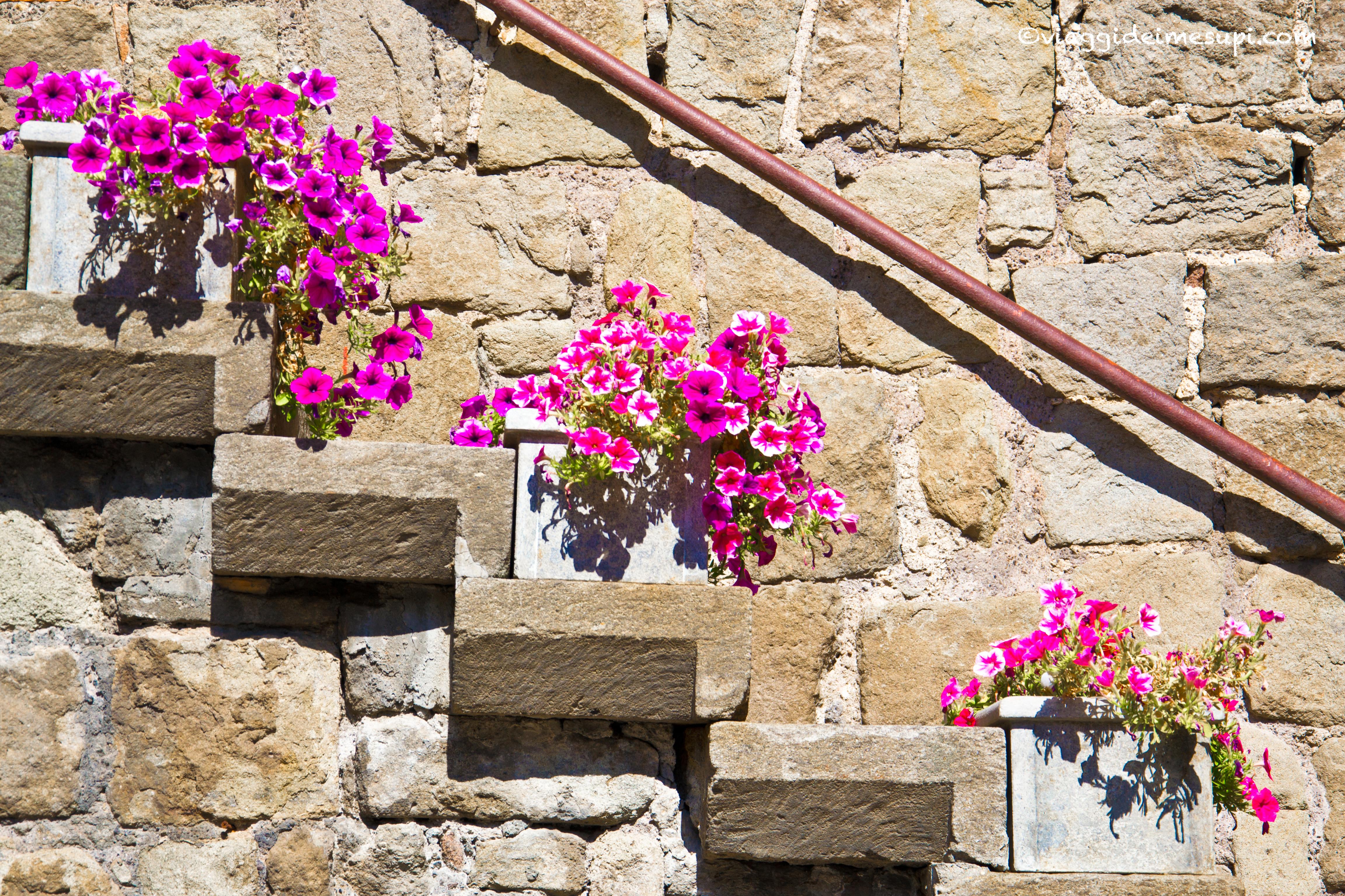 Cosa vedere a Viterbo, scale e fiori